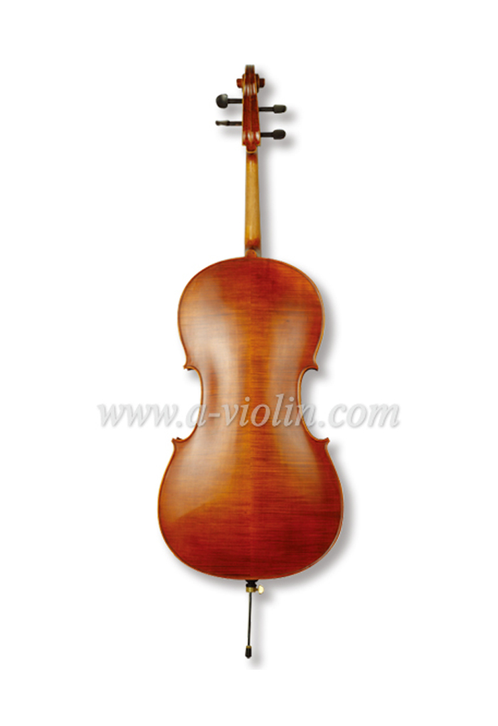 Beautiful Advanced Flamed Cello At Exceptional pricing (CH30Y)