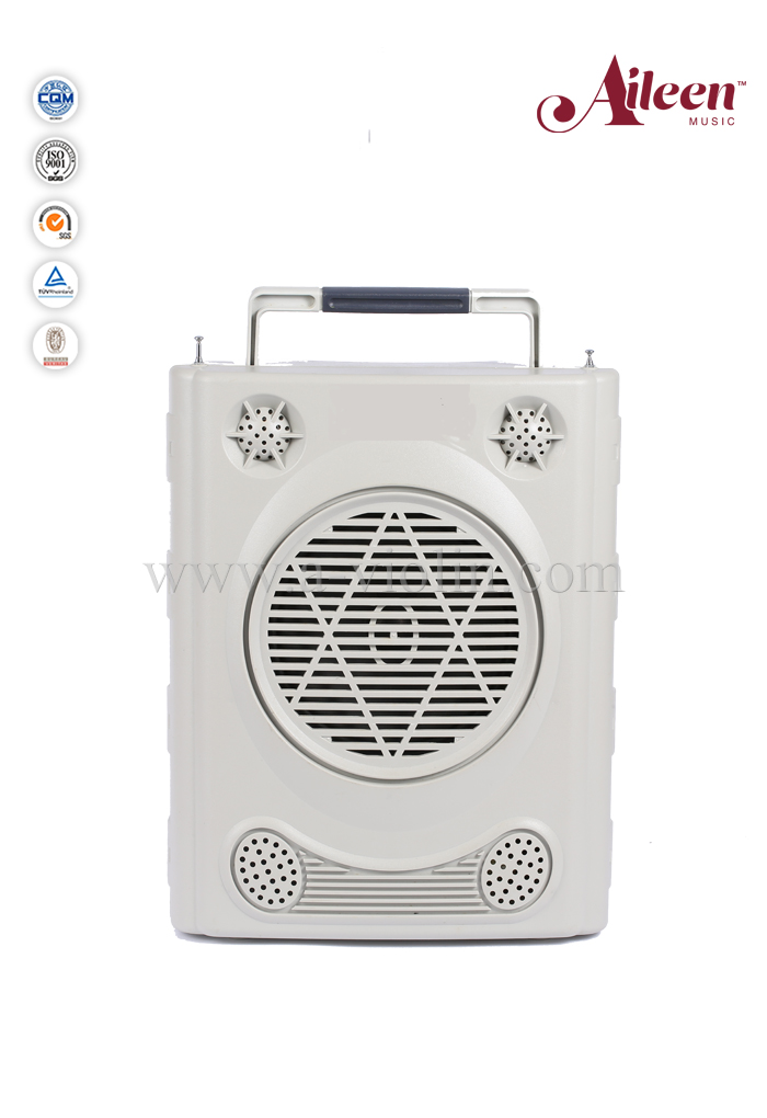 Professional Cassette player USB SD Card connector FM radio amplifier (AL-737)