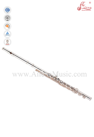 Entry-level 16 Hole White Brass/Nickel Silver C Key Flute (FL4311S)